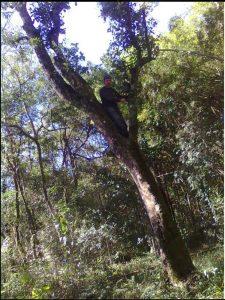 mate climbing cutting